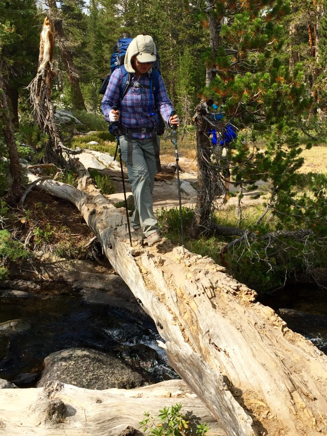 Using poles for balance on a creek crossing.